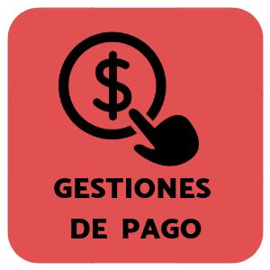 Botonpago2